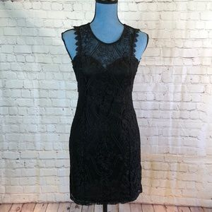 Filly Flair black lace body con dress w cute back